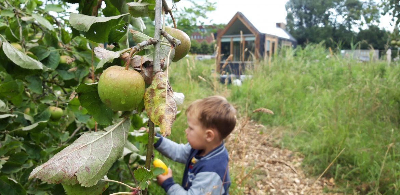 Tiny Village Kleinhuizen appelboomgaard